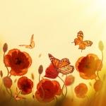 Маки с бабочками
