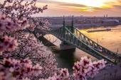 Город. Европа Мост в цветах