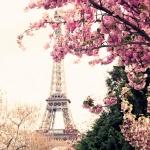 Город. Весенний Париж