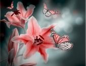Лилии в дымке