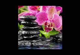модульная картина Орхидея в воде