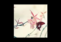 модульная картина Яблоня в цвету
