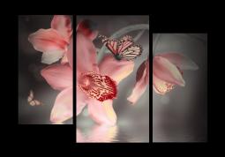 модульная картина Дымчатая орхидея