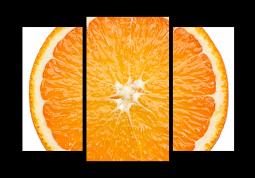модульная картина Апельсин