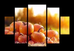 модульная картина Оранжевый урожай
