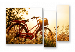 модульная картина Природа. Велосипед на закате