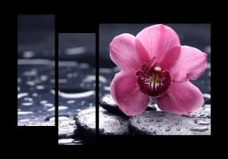 модульная картина с сюжетом Цветы