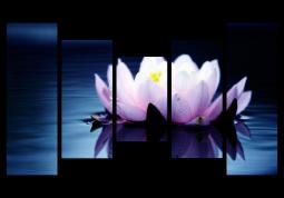 модульная картина Розовый лотос