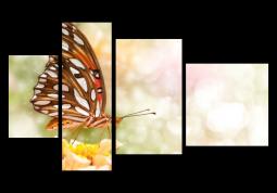 модульная картина Бабочка