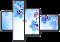 модульная картина Голубые орхидеи над водой