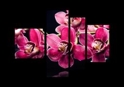 модульная картина Орхидеи глянец