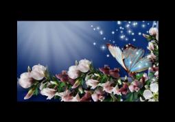 модульная картина Бабочка на цветах