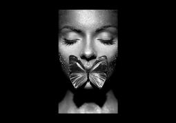 модульная картина Мерцание бабочки
