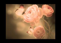 модульная картина Розовые лютики