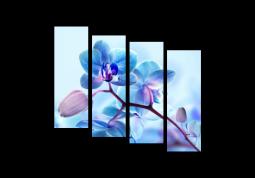 модульная картина Зимняя орхидея